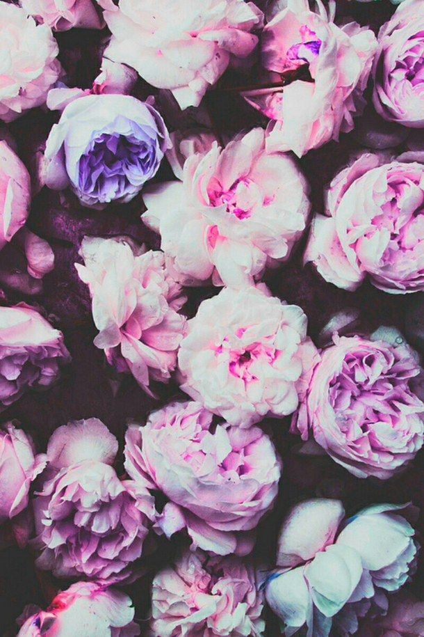 17 mejores imágenes sobre Tumblr wallpapers en Pinterest | Fondos para  iphone, Yin yang y Frases de inconformistas