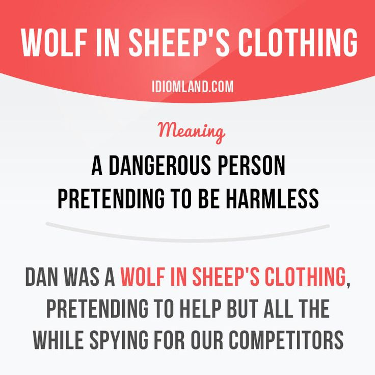 """""""Wolf in sheep's clothing"""" is a dangerous person pretending to be harmless. Example: Dan was a wolf in sheep's clothing, pretending to help but all the while spying for our competitors. #idiom #idioms #saying #sayings #phrase #phrases #expression #expressions #english #englishlanguage #learnenglish #studyenglish #language #vocabulary #dictionary #grammar #efl #esl #tesl #tefl #toefl #ielts #toeic #englishlearning #vocab #wordoftheday #phraseoftheday"""