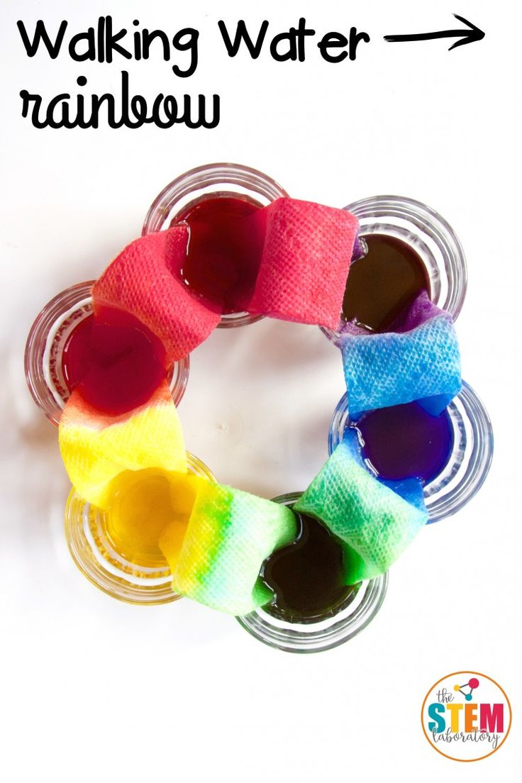 What an awesome science project for kids! Make a walking water rainbow with just a few simple supplies: water, paper towels and food coloring. Great idea for a science fair project or just-because science activity.