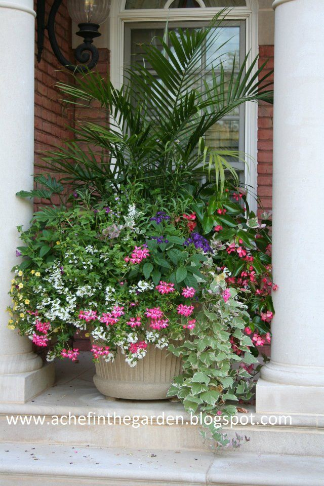 1605 Best Container Gardening Ideas Images On Pinterest Garden Container Pots And Flowers