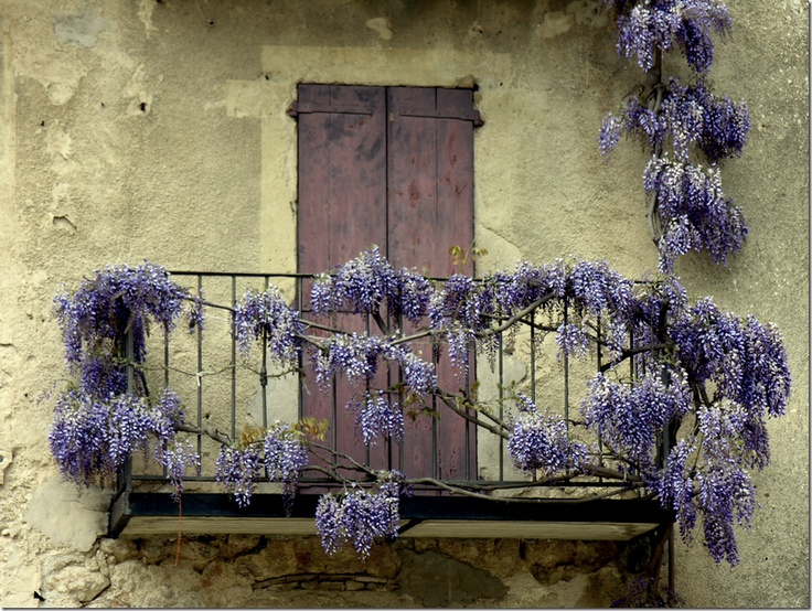 .: Doors Window, Beautiful Balconies, Brown Doors, Colors Palettes, So Pretty, Beautiful France, Outdoor Spaces, French Balconies, Photo