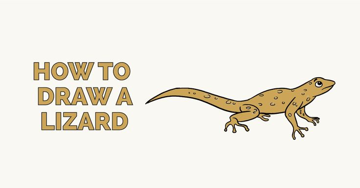 How To Draw A Lizard Really Easy Drawing Tutorial Drawing Tutorial Easy Easy Drawings Drawings