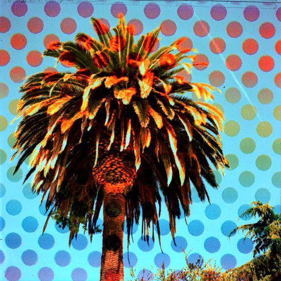 DIY lomo FILTER: Foto Lomografía, Polka Dots, Diy Rainbows, Rainbows Polka, Rainbows Spots, Rainbows Filters, Dots Filters, Pots Of Gold, Film Camera