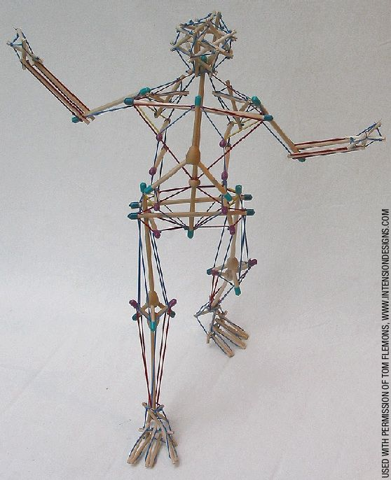 A simplified tensegrity model of the body