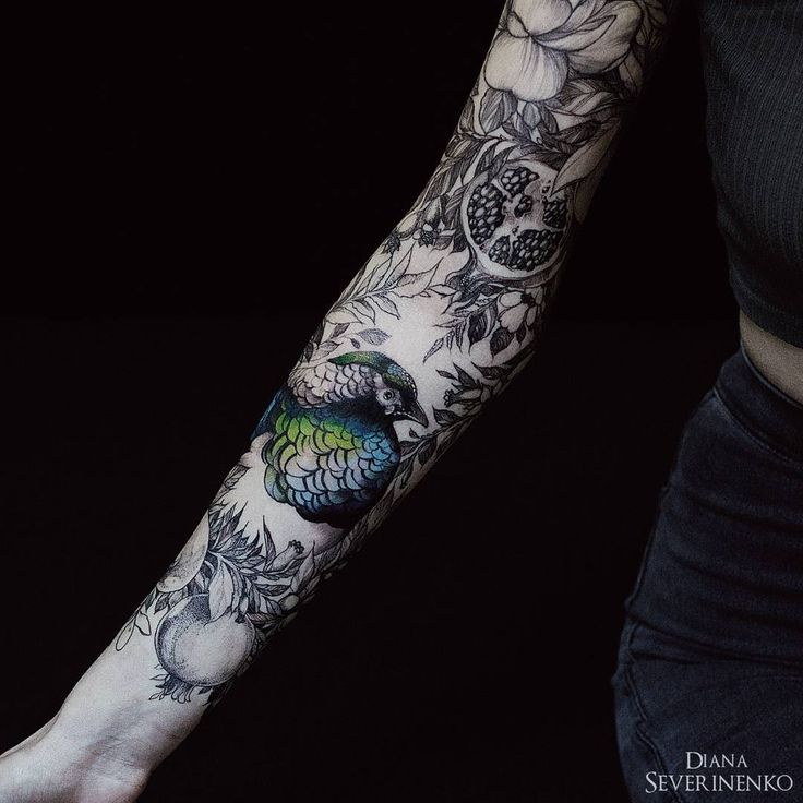 Colored Sleeve Tattoo Of Birds: 97 Best Images About Bird Tattoos On Pinterest