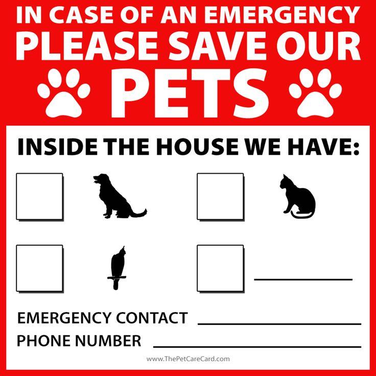 Emergency Pet Sticker – The Pet Care Card