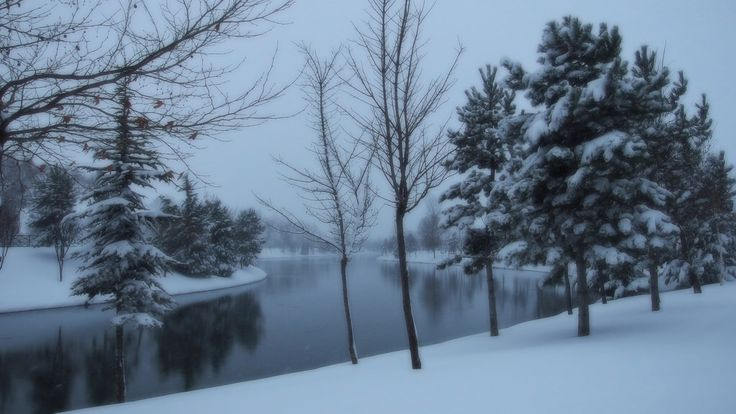 A winter day (1113)