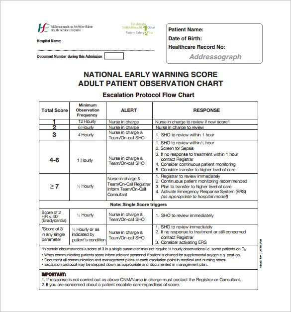 Template Net Medical Chart Template 10 Free Sample Example Format