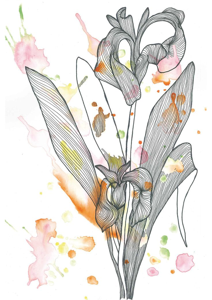 Flor / Flower N°5    Find me on #society6 #redbubble #lines #watercolor #acuarela #nature #graphic #design #art #flower
