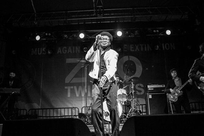Zoo Twilights - Charles Bradley with Saskwatch :: moshtix Photo Gallery