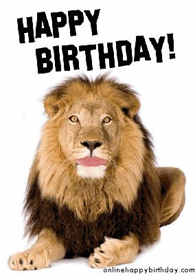a082f391387aef680a45088058317207 happy birthday photos free image 137 best birthday images on pinterest happy birthday greetings