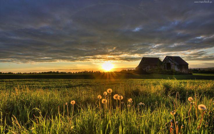 Pole, Zachód słońca, Domy, Chmury