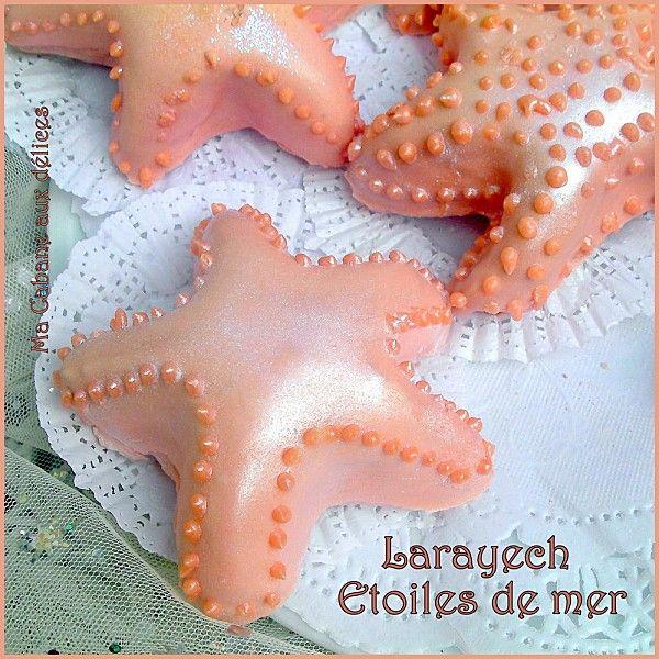 Larayech étoile de mer à 5 branches