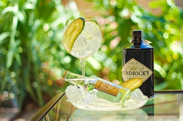 Gin Tonics  preparados con las mejores ginebras y tónicas // Gin & Tonics prepared with the best gins and tonics