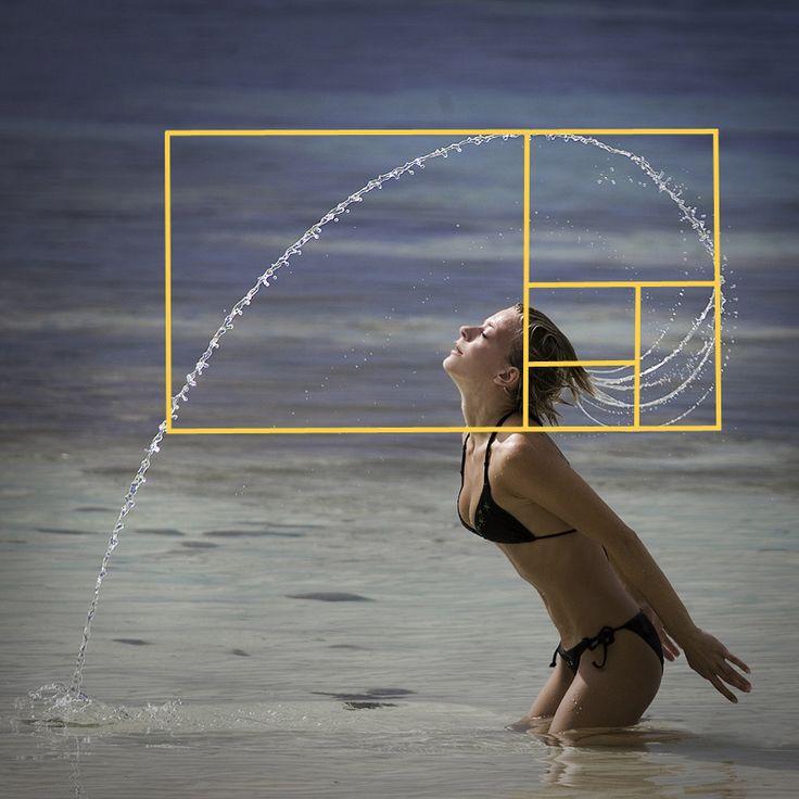 Golden ratio - POC 自然は、なぜ自然とこうなるのだ...重力?それとも?