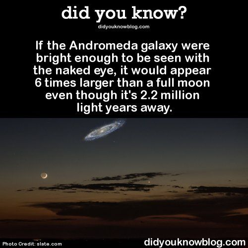 Best 25+ Andromeda galaxy ideas on Pinterest | Names of ...
