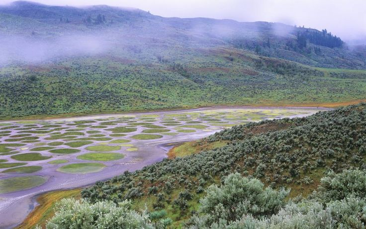 Spotted Lake, Βρετανική Κολομβία, Καναδάς
