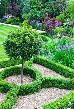 90 best images about parterre on pinterest gardens maze for Parterre vegetable garden design