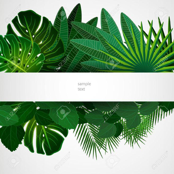 Тропические листья. Цветочный дизайн фона. Клипарты, векторы, и Набор Иллюстраций Без Оплаты Отчислений. Image 30178764.
