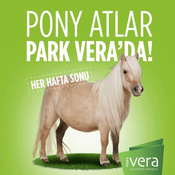 Sevimli atlar her hafta sonu #ParkVera'da minik misafirlerini bekliyor. Bugün kimler bizimle?