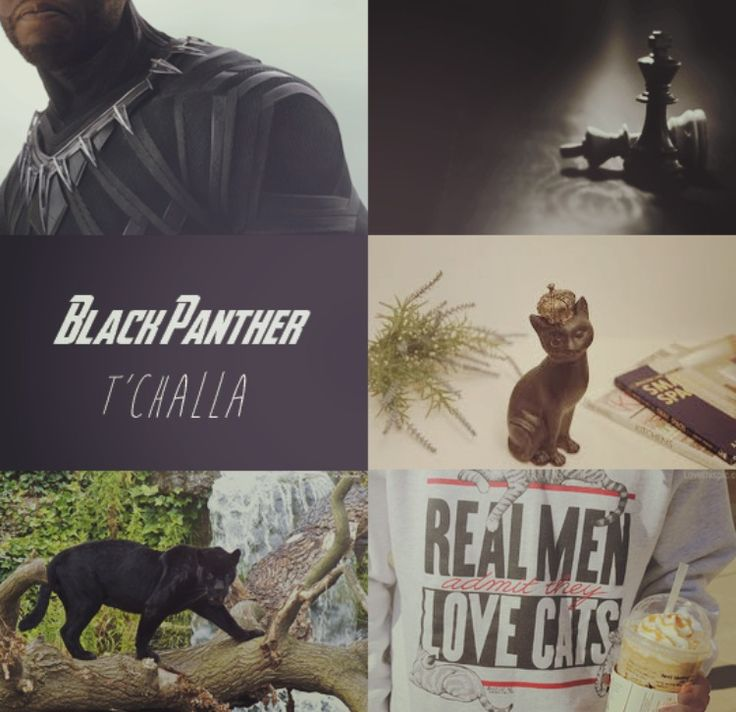 King T'Challa//Blank Panther