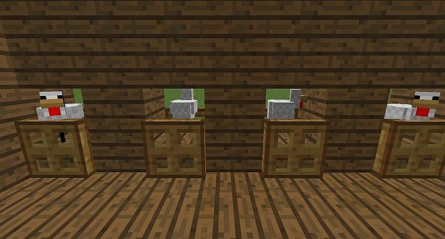 chicken coop interior images | Chicken Coop