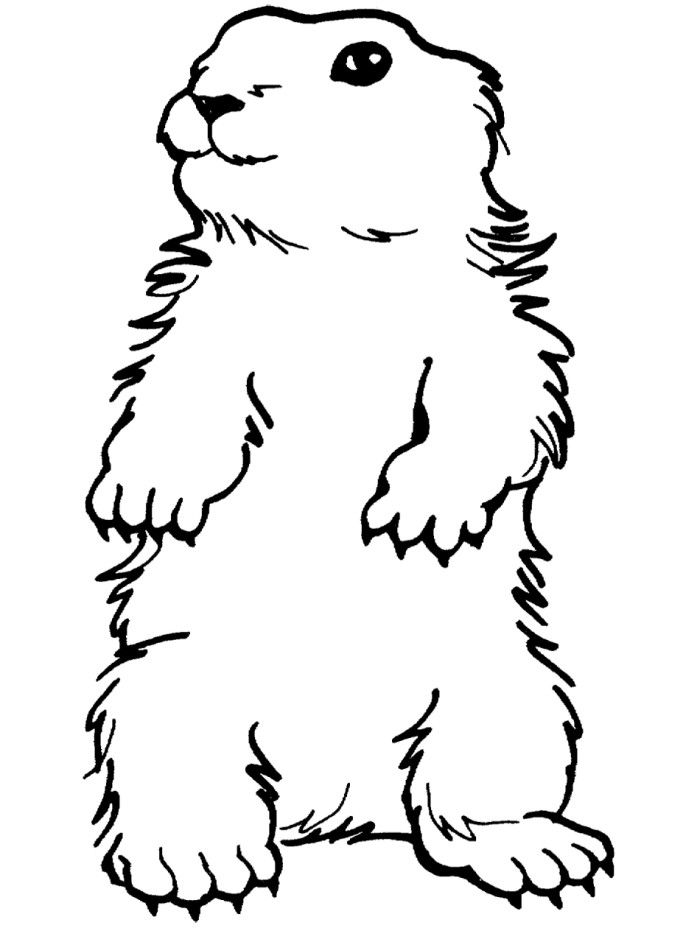 Groundhog printable coloring pages for Groundhog coloring page