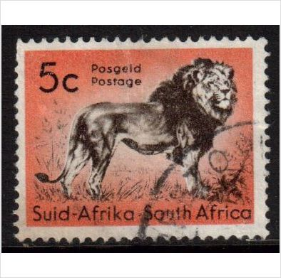 South Africa Scott 247 - SG191, 1961 Lion 5c used stamps sur le France de eBid