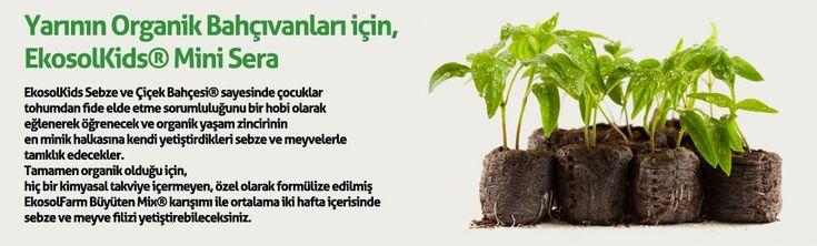 Yarının Organikçilerine Solucan Gübresi ile bitki üretim seti. Ekosolkids Mini Sera içerisinde, meyve,sebze üretmek için tohum, gübre ve tüm bilgiler.