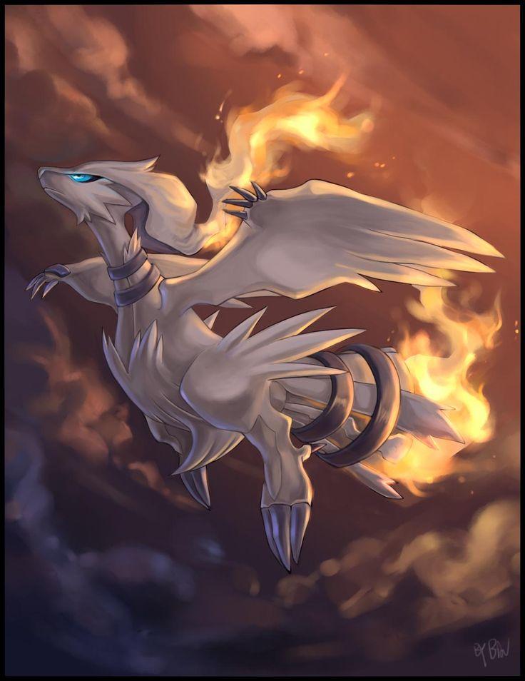 Reshiram pokemon legendario, tipo Dragón Fuego