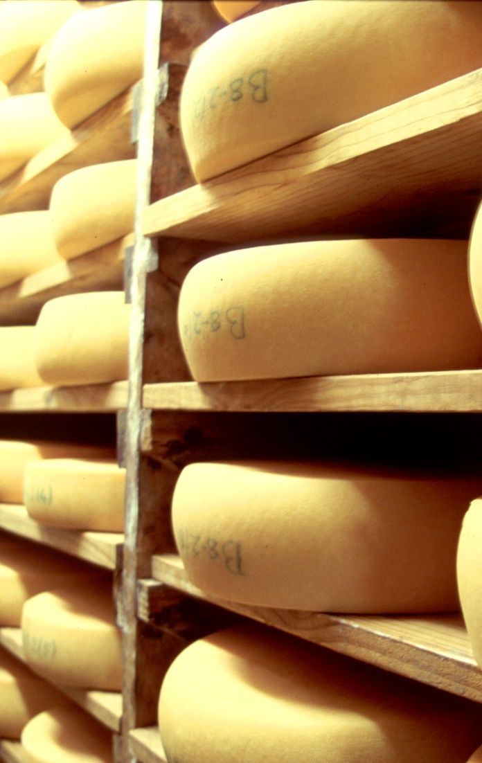 As they recently won two medals at the world's largest cheese competition, you should surely stop by at Klein River Cheese when you are in Stanford.