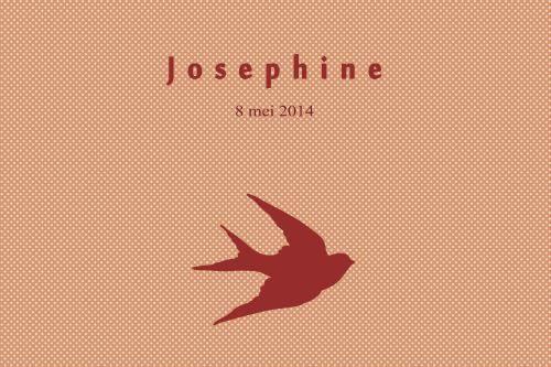 Geboortekaartje meisje - Vogel - roze - Pimpelpluis - https://www.facebook.com/pages/Pimpelpluis/188675421305550?ref=hl (# simpel - eenvoudig - retro - naam - dieren - silhouette - origineel - roze - vogel - vogeltje - zwaluw)