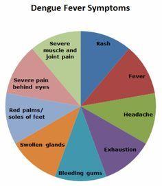 Chart showing symptoms of dengue fever