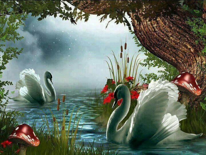 картинки анимация природа и лебеди дверцы шкафа