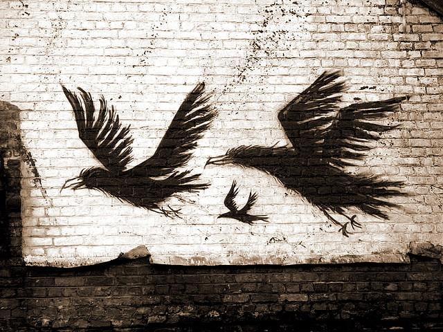 Graffiti by Roa / Gent, Belgium