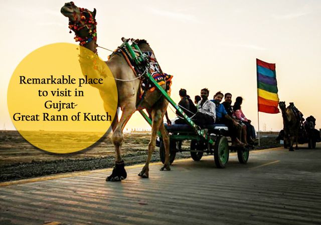 #Rann of #Kutch is one of the most #beautiful and #world's largest #saltdesert. It is a perfect combination of #nature's #beauty, #culture and tradition and luxury of colors, all together reflect the magnificence of Kutch. The Great Rann of Kutch is situated in the district of #Kutch, between the Gulf of Kutch and the mouth of the #IndusRiver in southern #Pakistan. Self drive trips are the best, because they make you experience the local culture and interact with local people on your way.