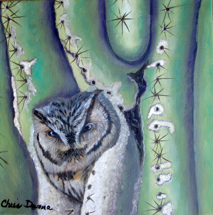 """""""Who Who Me?  oil  12 x 12"""" on gallery wrapped canvas by Chris Demma  Available"""