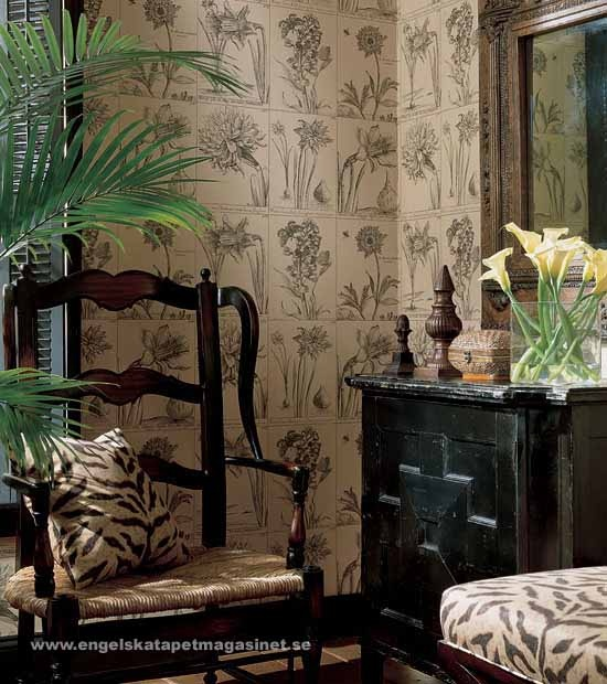 thibaut botanical wallpaper british colonial pinterest. Black Bedroom Furniture Sets. Home Design Ideas