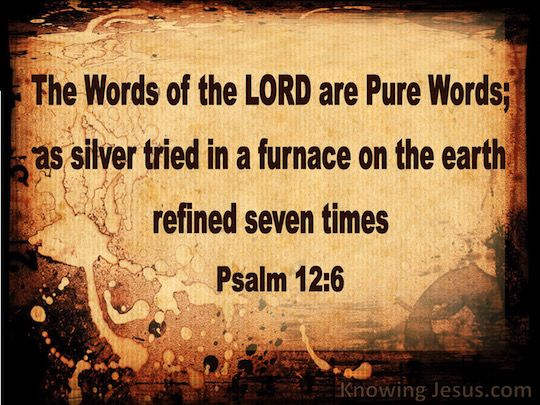 Psalm 12-6 The Words Of The Lord Are Pure Words brown copy