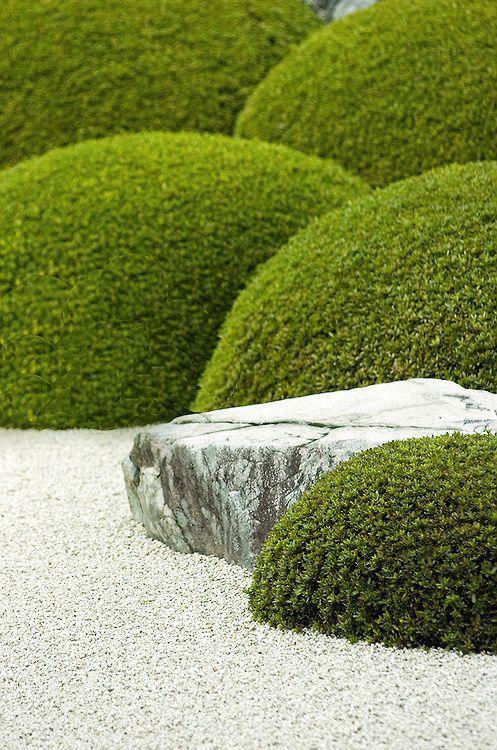 Japanese Zen Garden 禅の庭