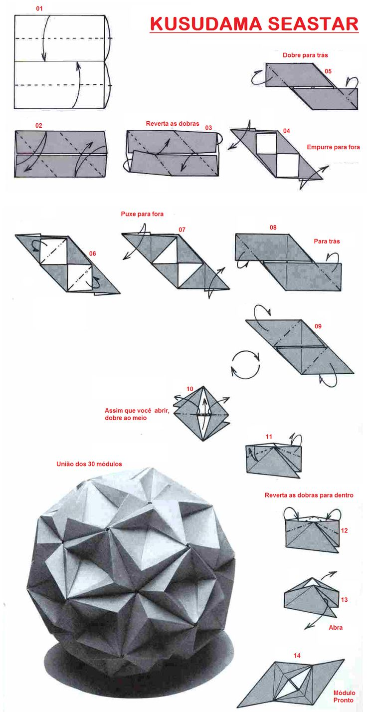 Adobracya  Kusudama Diagram Seastar