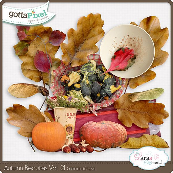 Autumn Beauties Vol. 21 :: Gotta Pixel Digital Scrapbook Store