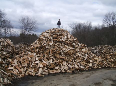 Best Wood for Smoking Meat