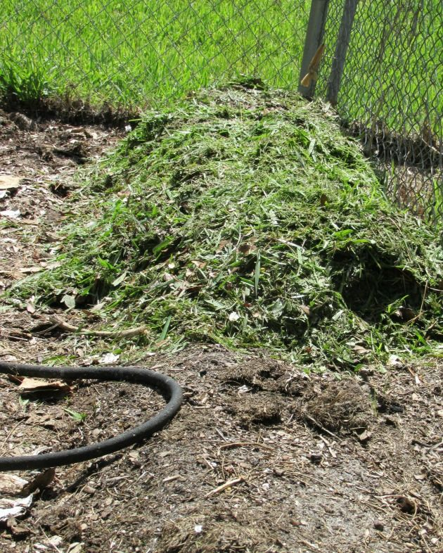 You Can Use Grass Clippings And Leaves To Build Great Garden Soil. Check  Out How