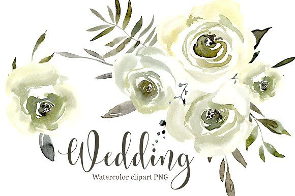 Watercolor White Roses Flowers Png Flower Drawing Watercolor Flowers Floral Watercolor