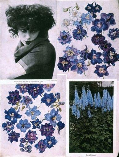 Hannah Hoch's Album c.1933