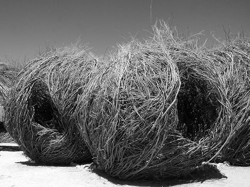 Patrick Dougherty - natural sculpture - cocoons