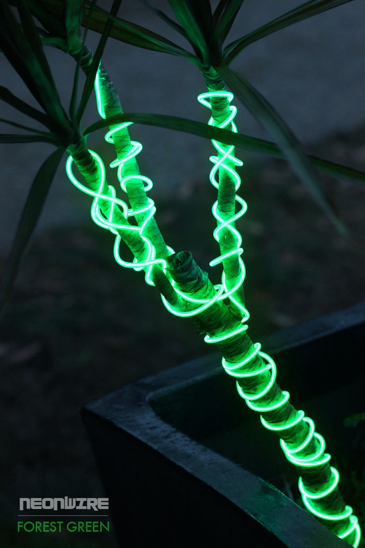 Our Forest Green NeonWire is the perfect lighting piece to enhance your garden area. It can be wrapped around the base/stems of plants or placed inside your pots.