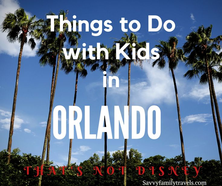 Things to Do in Orlando with Kids Besides Disney - Savvy Family TravelsSavvy Family Travels
