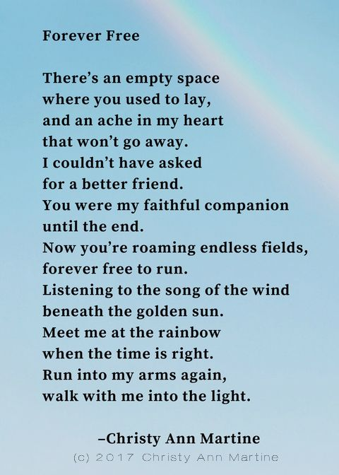 Forever Free - Pet Loss Poem by Christy Ann Martine #pets #petloss #lossofpet #losingapet  #dogs #cats #mansbestfriend This poem will be available in my Etsy store very soon: www.etsy.com/ca/shop/ChristyAnnMartine